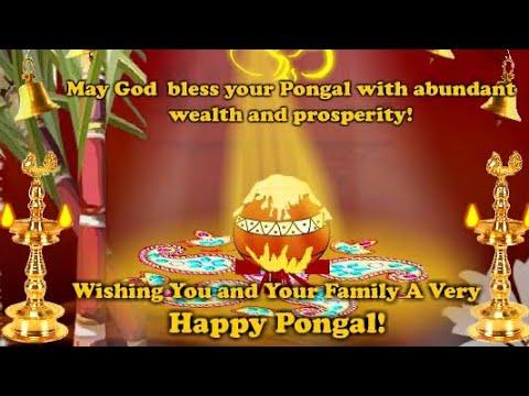 tamil pongal status