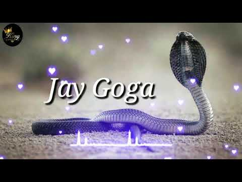 Jay Goga Whatsapp Status