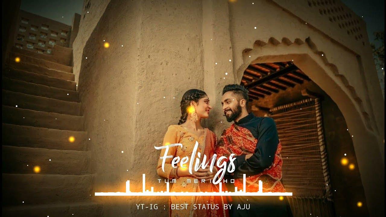 Status Punjabi Girl Video