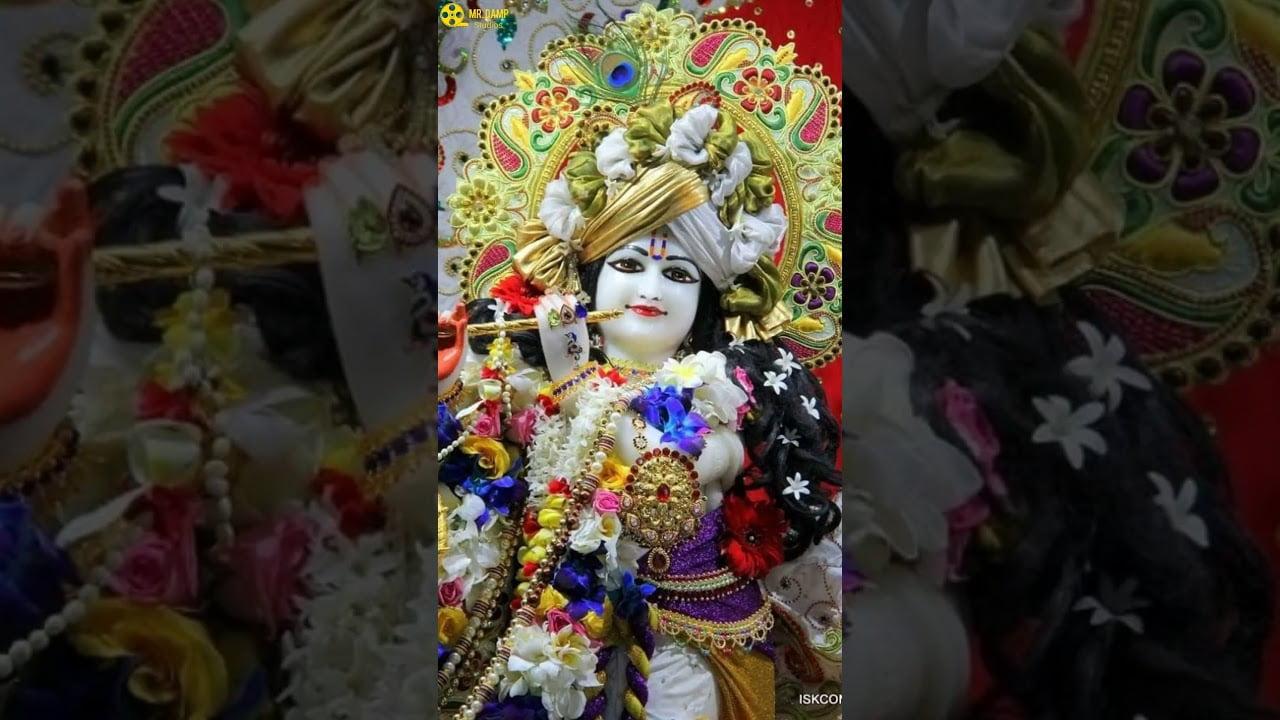 best krishna bgm janmashtami full screen status