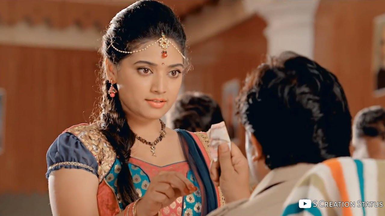 raksha bandhan status video kannada
