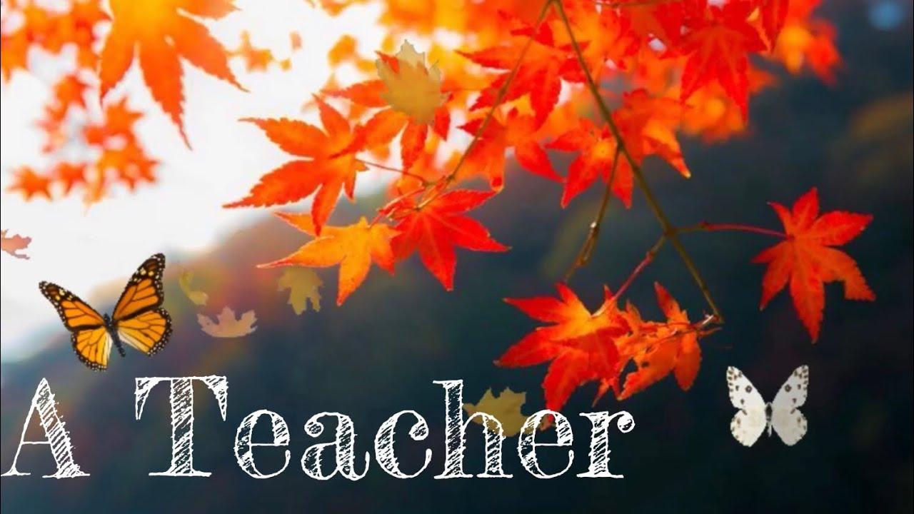status for best teacher